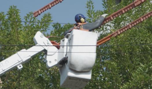 Subsecretario de Energía y Superintendente SEC encabezan fiscalización de poda de árboles para evitar cortes de luz