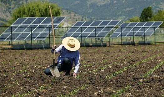 Seremi Anita Prizant destacó que se buscará incorporar más energías renovables