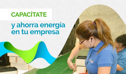 Seremi de Energía invita a postular al Programa Gestiona Energía MiPyMEs 2019