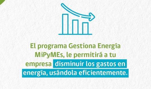 Pymes de Coyhaique se capacitaron en el buen uso de la energía