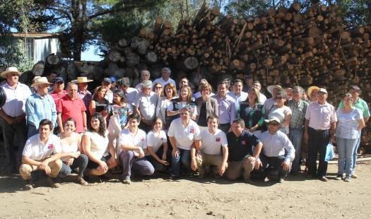 Gobierno lanza programa para extraer y comercializar leña afectada por incendio