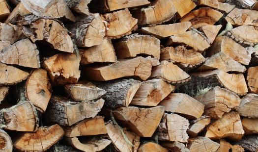 """Región de Aysén cuenta con los tres primeros beneficiarios del Programa """"Centro Integral de Biomasa"""" de Chile, que aumentarán la oferta de leña seca y aportarán a la descontaminación"""
