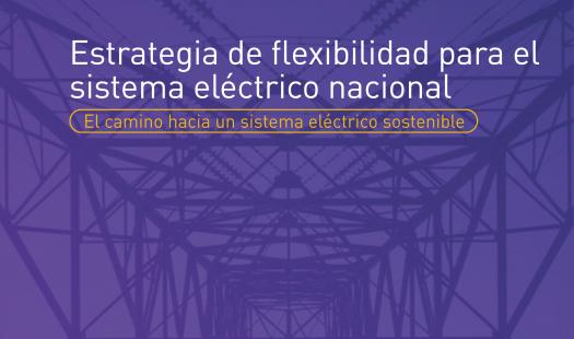 Estrategia de flexibilidad para el sistema eléctrico nacional