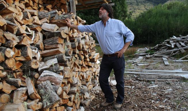 Ayseninos: Avanza proyecto que regula uso de leña como combustible domicili...