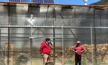 Programa Leña Más Seca benefició con equipamiento y tecnología a comerciantes para aumentar oferta de leña y disminuir la contaminación