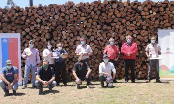 Energía extiende plazo de postulaciones para acceder al sello calidad de leña