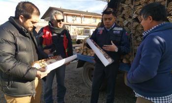 Seremi de Energía, Conaf, SII y Carabineros promueven comercio formal de la leña