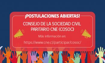 CNE convoca a postular a su 1er. Consejo de la Sociedad Civil Paritario