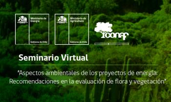 Seminario Virtual - Aspectos ambientales de los proyectos de energía