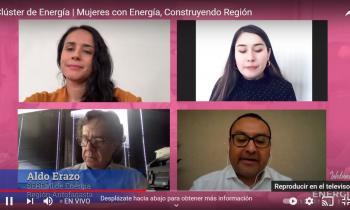 Seremi de Energía participó en Webinar para mujeres proveedoras