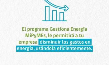 Gran participación de Pymes regionales en taller sobre buena gestión de la energía