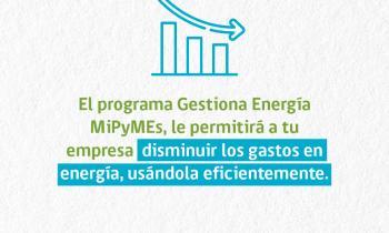 Invitan a Mipymes de la región de Los Lagos al taller online Gestiona Energía