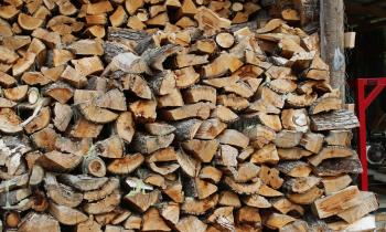 """Región de Aysén cuenta con los tres primeros beneficiarios del Programa """"Centro Integral de Biomasa"""" de Chile,..."""