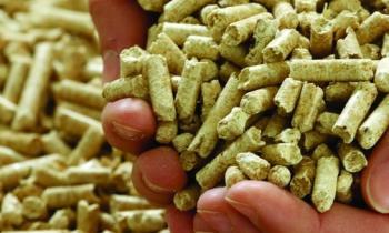 Subsecretario conversa con productores de leña sobre biomasa