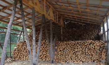 Programa Centro Integral de Biomasa sigue avanzando