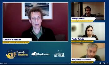 Profesional de la SEREMI de Energía de Magallanes fue panelista en webinar sobre ERNC