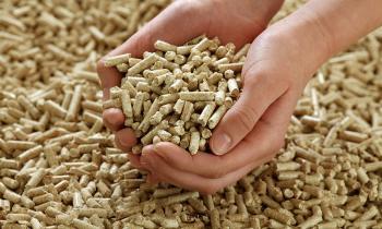Autoridades regionales se refieren a la situación de abastecimiento de pellet en Aysén