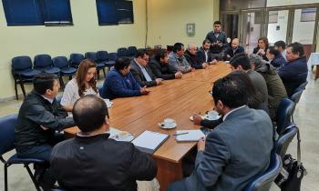 Seremi de Energía lidera mesa técnica para mejorar suministro eléctrico en Isla Mocha