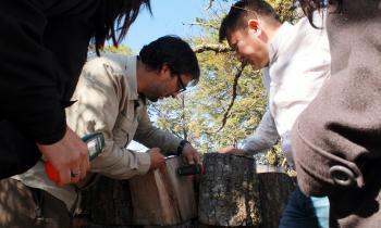 Puerto Williams: SEREMI de Energía dictó taller virtual sobre buenas prácticas en el uso y almacenamiento de leña
