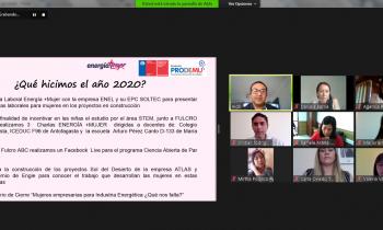 MESA REGIONAL ENERGÍA + MUJER PRESENTÓ PLAN DE TRABAJO 2021