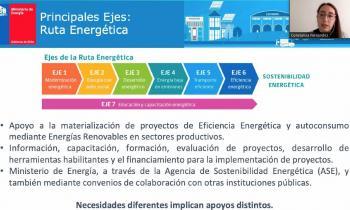 Mipymes de O´Higgins se capacitaron en Taller del Programa Gestiona Energía 2021