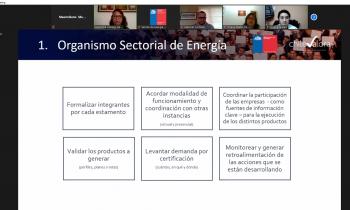Magallanes: Mesa +Capital Humano en Energía conoció los 5 Proyectos de Competencias Laborales que preparan su certificación para el mercado energético