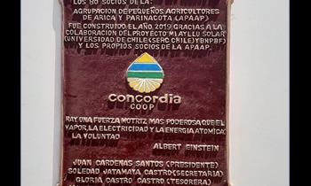 Packing de Tomates funciona sólo con Energía Solar en Pampa Concordia