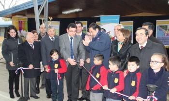 Ministro inauguró paneles solares en escuelas de Colbún y Pelarco  y un centro de acopio de leña en Maule