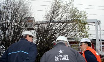 Seremi Sáez y Director Regional de la SEC monitorean trabajos preventivos para resguardar líneas eléctricas