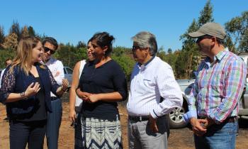 Gobierno lanza programa para apoyar a productores de leña afectados por incendios forestales